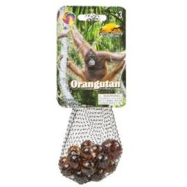 Canicas Orangutan
