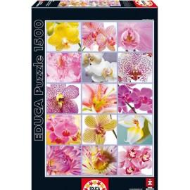 Puzzle 1500 Colagem de Flores
