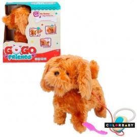 Perrito Gogo