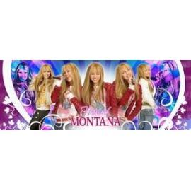 Puzzle 160 Hannah Montana