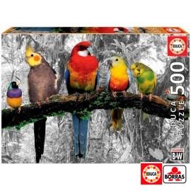 Puzzle 500 Pajaros Jungla