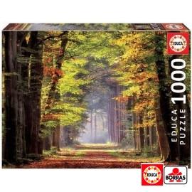 Puzzle 1000 Paseo Otoñal