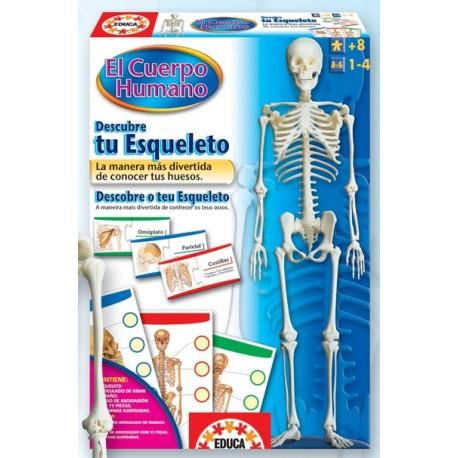 Descubre Tu Esqueleto