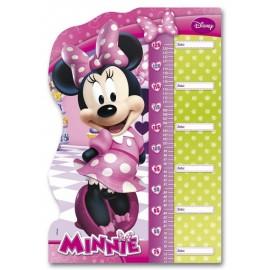 Puzzle Metro Minnie